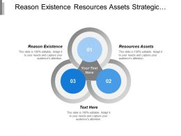 Reason Existence Resources Assets Strategic Management Process Model Cpb