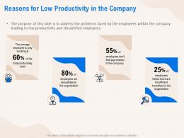 Reasons For Low Productivity In The Company Employees Ppt Powerpoint Presentation Portfolio Files