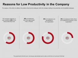 Reasons For Low Productivity In The Company Organization Ppt Powerpoint Presentation Deck