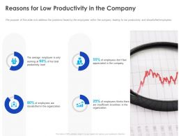 Reasons For Low Productivity In The Company Ppt Powerpoint Presentation Infographic