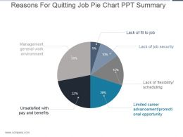 Reasons For Quitting Job Pie Chart Ppt Summary