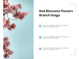 Red Blossoms Flowers Branch Image