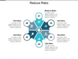 Reduce Risks Ppt Powerpoint Presentation Show Format Cpb