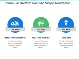 Reduce Use Directives Real Time Analysis Maintenance Reuse