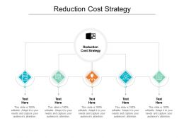 Reduction Cost Strategy Ppt Powerpoint Presentation Gallery Cpb