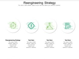 Reengineering Strategy Ppt Powerpoint Presentation Professional Pictures Cpb