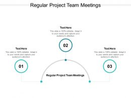 Regular Project Team Meetings Ppt Powerpoint Presentation Gallery Slides Cpb