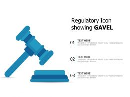 Regulatory Icon Showing Gavel