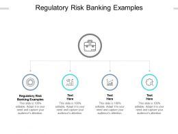 Regulatory Risk Banking Examples Ppt Powerpoint Presentation Picture Cpb