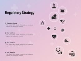 Regulatory Strategy Ppt Powerpoint Presentation Pictures Slide Portrait