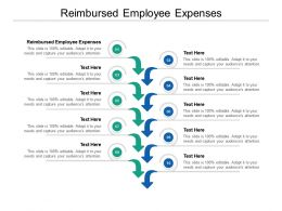 Reimbursed Employee Expenses Ppt Powerpoint Presentation Professional Clipart Images Cpb
