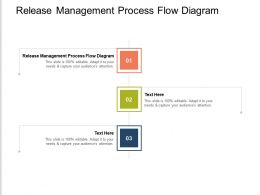 Release Management Process Flow Diagram Ppt Powerpoint Presentation Professional Design Templates Cpb