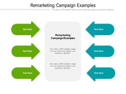 Remarketing Campaign Examples Ppt Powerpoint Presentation Infographics Images Cpb