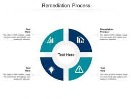 Remediation Process Ppt Powerpoint Presentation Layouts Design Ideas Cpb