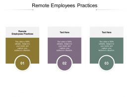 Remote Employees Practices Ppt Powerpoint Presentation File Slide Portrait Cpb