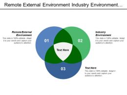 Remote External Environment Industry Environment Internal Assessment Generic Strategy