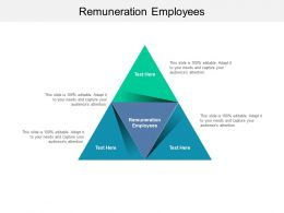 Remuneration Employees Ppt Powerpoint Infographic Template Clipart Cpb