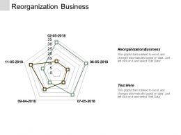 Reorganization Business Ppt Powerpoint Presentation Inspiration Good Cpb