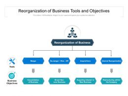 Reorganization Of Business Tools And Objectives