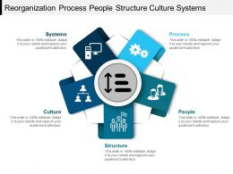 Reorganization Process People Structure Culture Systems