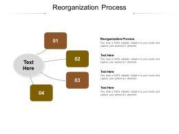 Reorganization Process Ppt Powerpoint Presentation Portfolio Graphics Cpb