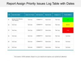 Report Assign Priority Issues Log Table With Dates