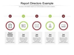 Report Directors Example Ppt Powerpoint Presentation Slides Inspiration Cpb
