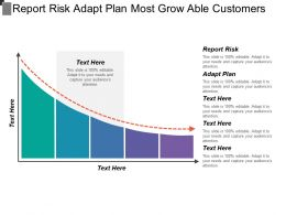 Report Risk Adapt Plan Most Grow Able Customers