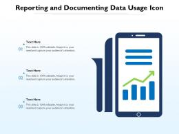 Reporting And Documenting Data Usage Icon
