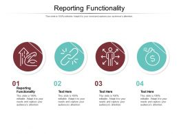 Reporting Functionality Ppt Powerpoint Presentation Infographic Template Inspiration Cpb