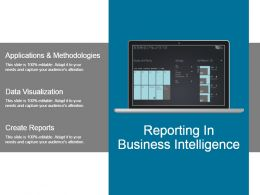 Reporting In Business Intelligence Powerpoint Slide Rules