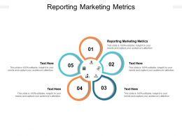 Reporting Marketing Metrics Ppt Powerpoint Presentation Professional Sample Cpb
