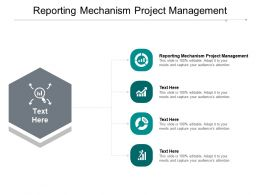 Reporting Mechanism Project Management Ppt Powerpoint Presentation Icon Template Cpb