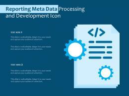 Reporting Meta Data Processing And Development Icon