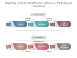 Reporting Process Of Distribution Channels Ppt Examples Professional