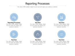 Reporting Processes Ppt Powerpoint Presentation Visuals Cpb