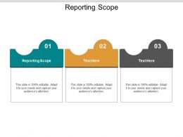 Reporting Scope Ppt Powerpoint Presentation Infographics Outline Cpb