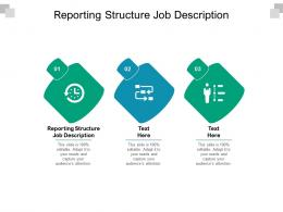 Reporting Structure Job Description Ppt Powerpoint Presentation Infographic Template Files Cpb