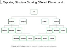Reporting Structure Showing Different Division And Operations Marketing Finance