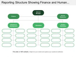 Reporting Structure Showing Finance And Human Resource Operations