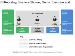 Reporting Structure Showing Senior Executive And Supplier