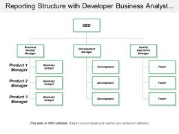 Reporting Structure With Developer Business Analyst Tester