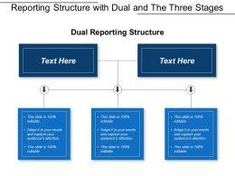 Reporting Structure With Dual And The Three Stages