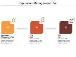 Reputation Management Plan Ppt Powerpoint Presentation Gallery Guidelines Cpb