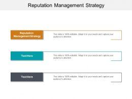 Reputation Management Strategy Ppt Powerpoint Presentation Professional Portfolio Cpb