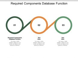 Required Components Database Function Ppt Powerpoint Presentation Visual Cpb