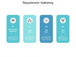 Requirement Gathering Ppt Powerpoint Presentation Icon Professional Cpb