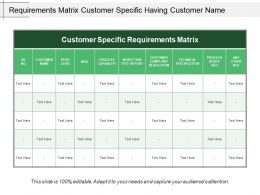 Requirements Matrix Customer Specific Having Customer Name