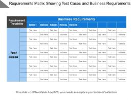 Requirements Matrix Showing Test Cases And Business Requirements