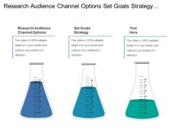 Research Audience Channel Options Set Goals Strategy Monitor Project